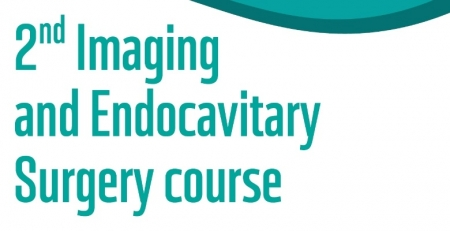 Arranca hoje o 2nd Imaging and Endocavitary Surgery Course